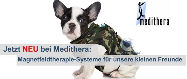 Hund mit Medithera Magnetfeldmatte